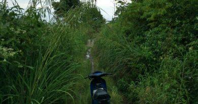 Foto Jalan Sungai Ning Rusak